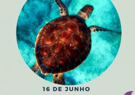 Dia Mundial da Tartaruga-marinha
