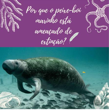 Por que o peixe-boi marinho está ameaçado de extinção?